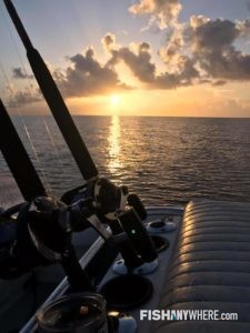 Rods and Reels in sunlight of North Miami
